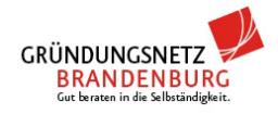 Gründungsnetz